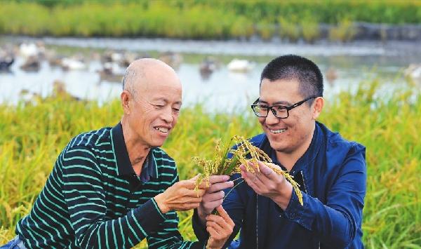 特色寒地水稻受市場青睞