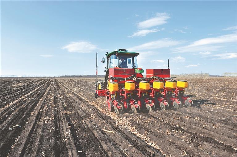 玉米開始播種了